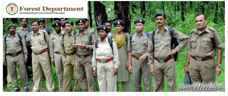 CG Forest Game Guard Admit Card