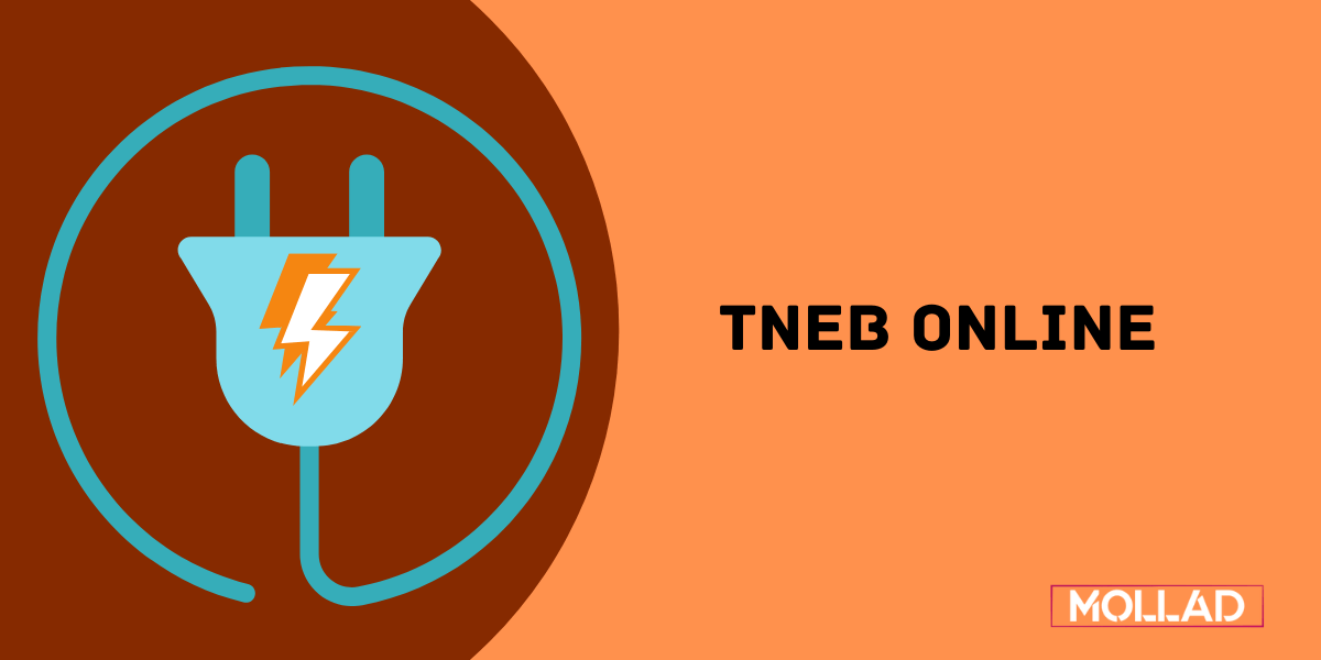 tneb online payment reading details